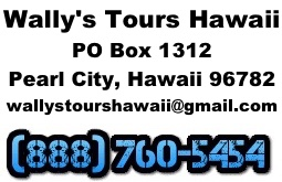 wally tours hawaii contact